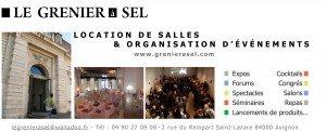 Logo_grenier_a_sel_dans_les_vignes