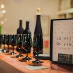 Wine Tour au Château de la Tuilerie